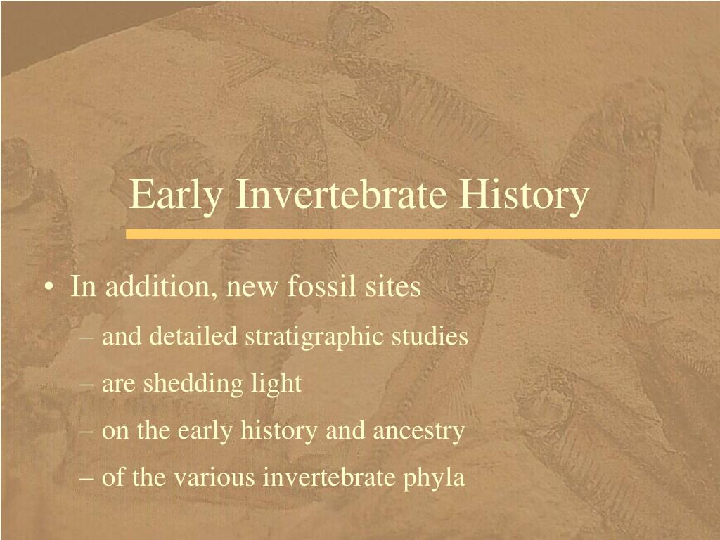 Early Invertebrate History