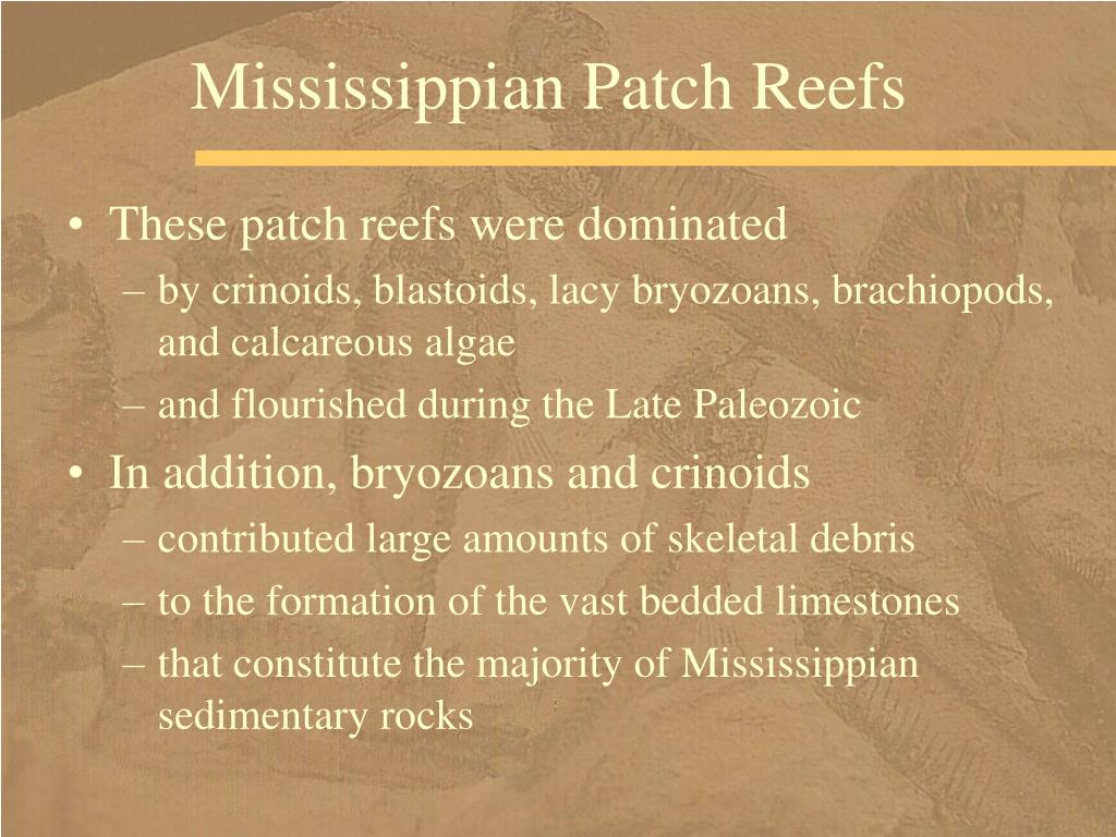 Mississippian Patch Reefs