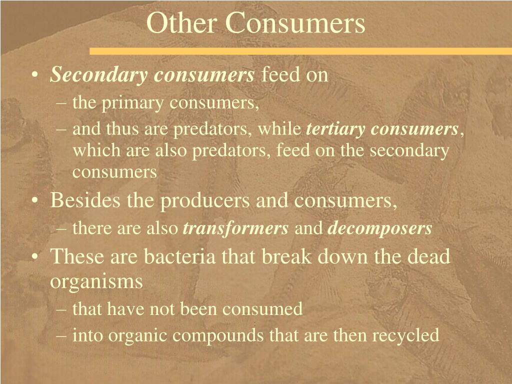 Other Consumers