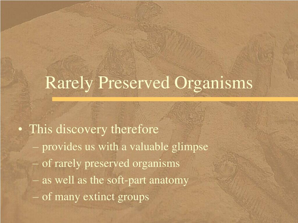 Rarely Preserved Organisms