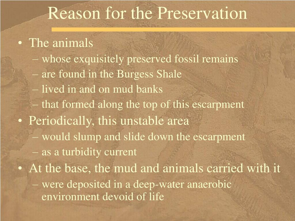 Reason for the Preservation