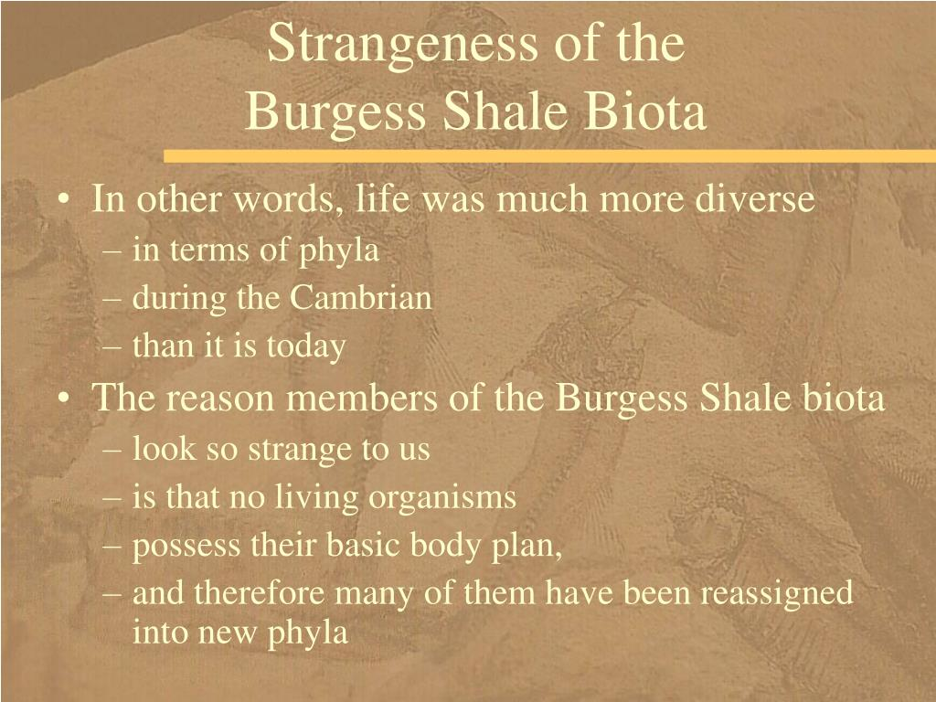 Strangeness of the