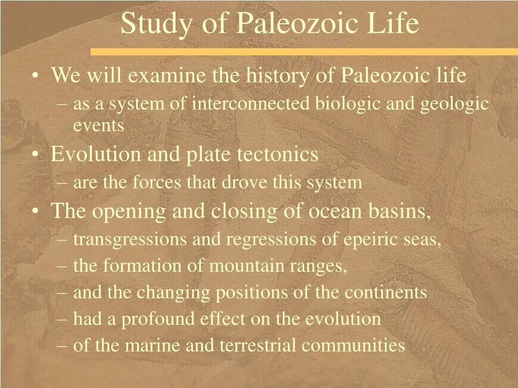 Study of Paleozoic Life