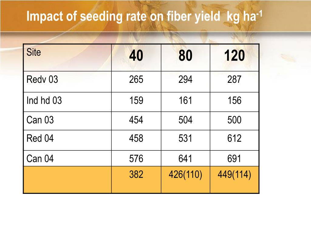 Impact of seeding rate on fiber yield  kg ha