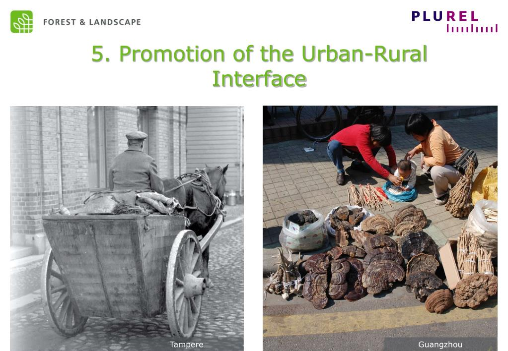 5. Promotion of the Urban-Rural Interface