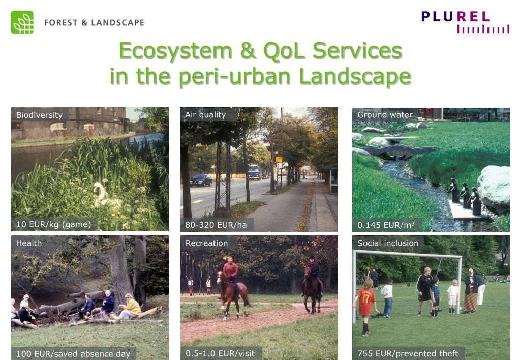 Ecosystem & QoL Services