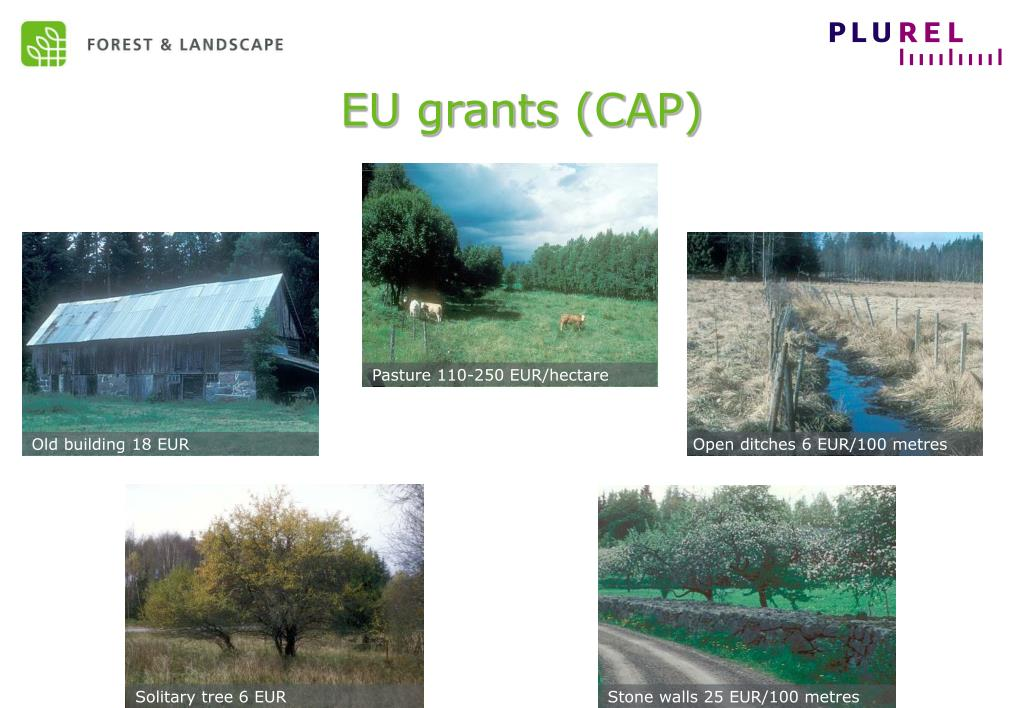 EU grants (CAP)