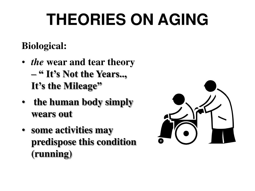 THEORIES ON AGING