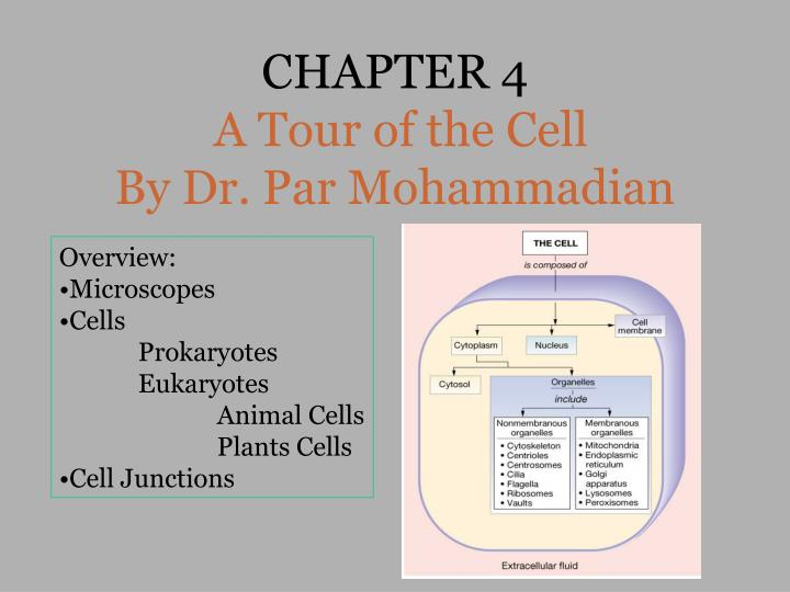 Chapter 4 a tour of the cell by dr par mohammadian