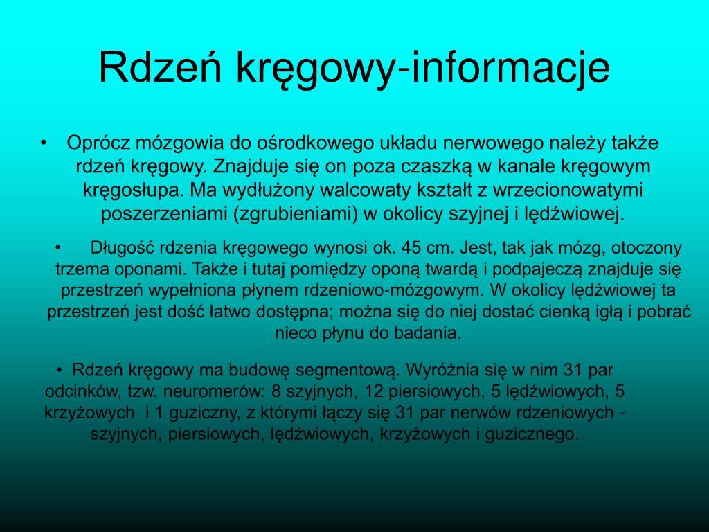 Rdzeń kręgowy-informacje