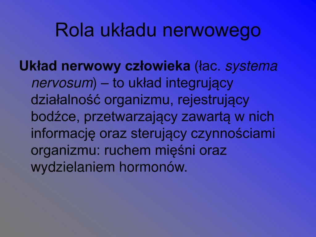 Rola układu nerwowego