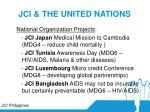 jci the united nations41