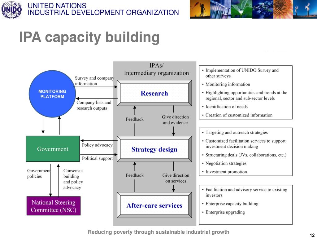 IPA capacity building