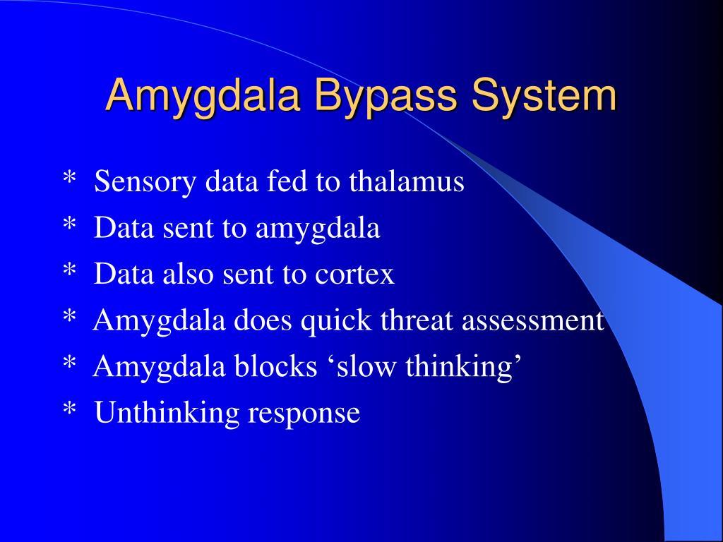 Amygdala Bypass System
