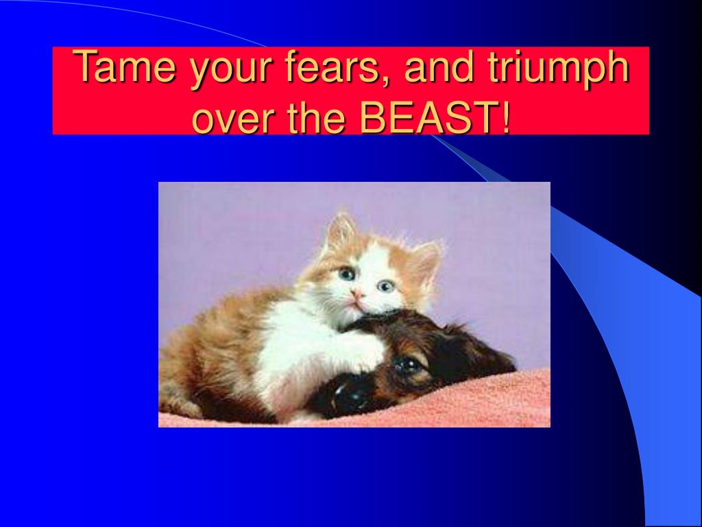 Tame your fears, and triumph over the BEAST!