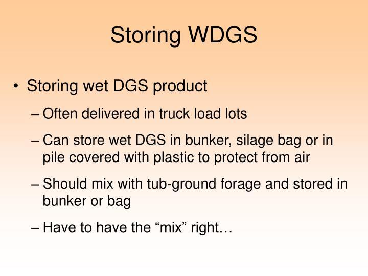 Storing WDGS