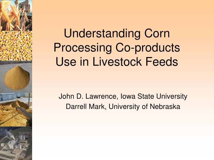 Understanding corn processing co products use in livestock feeds