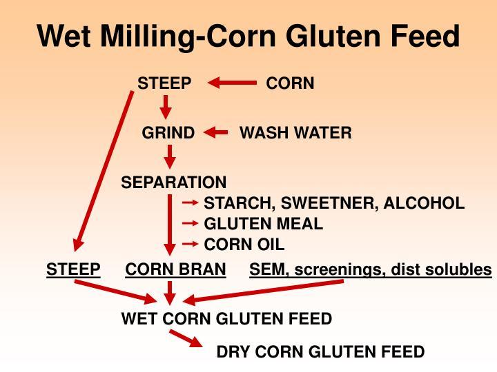 Wet Milling-Corn Gluten Feed
