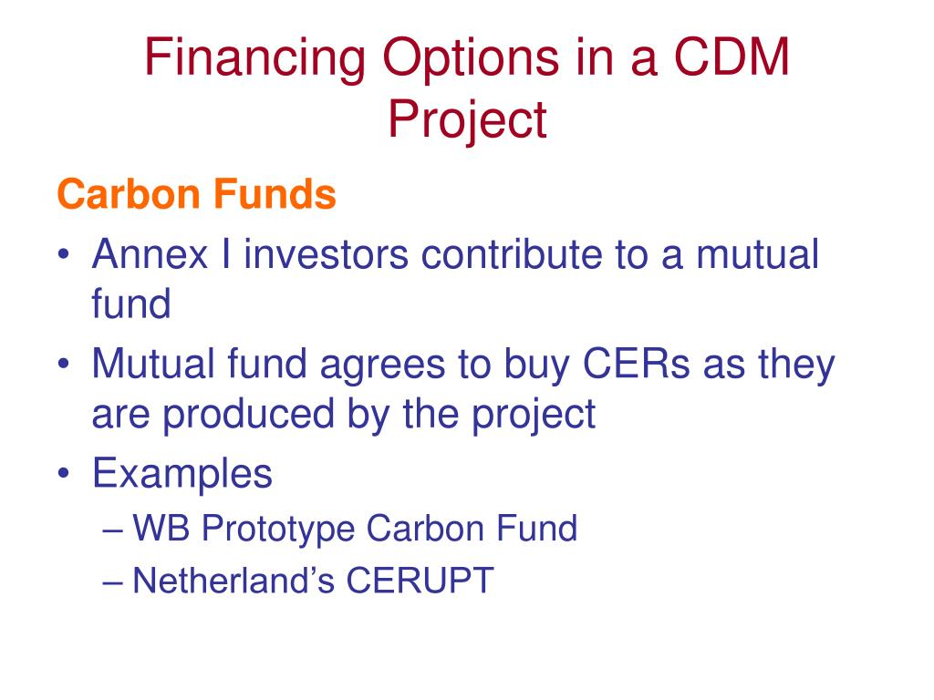 Financing Options in a CDM Project