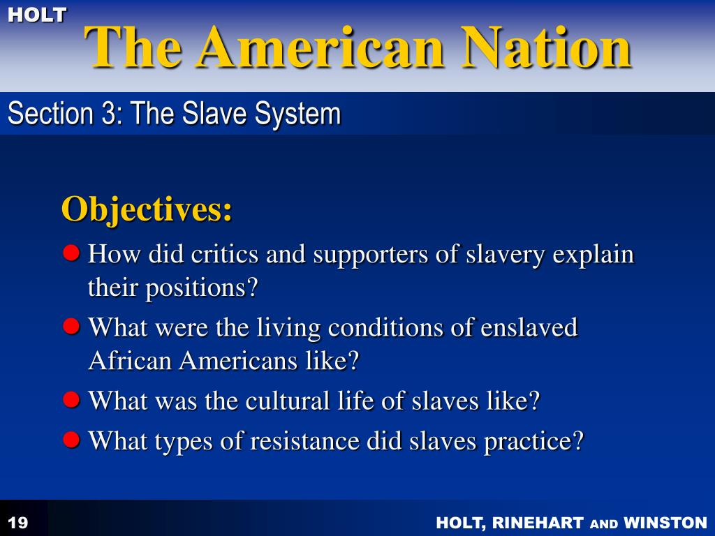 Section 3: The Slave System