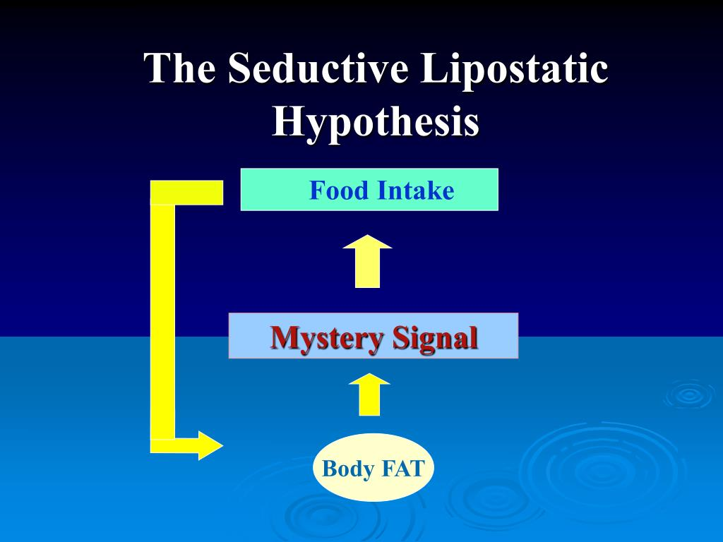 The Seductive Lipostatic Hypothesis