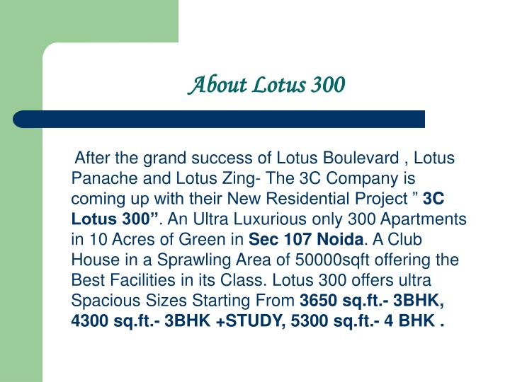 About lotus 300