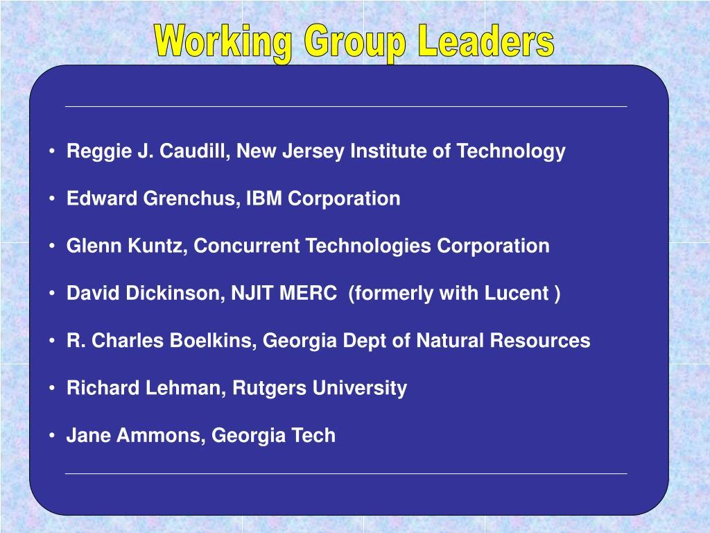 Working Group Leaders