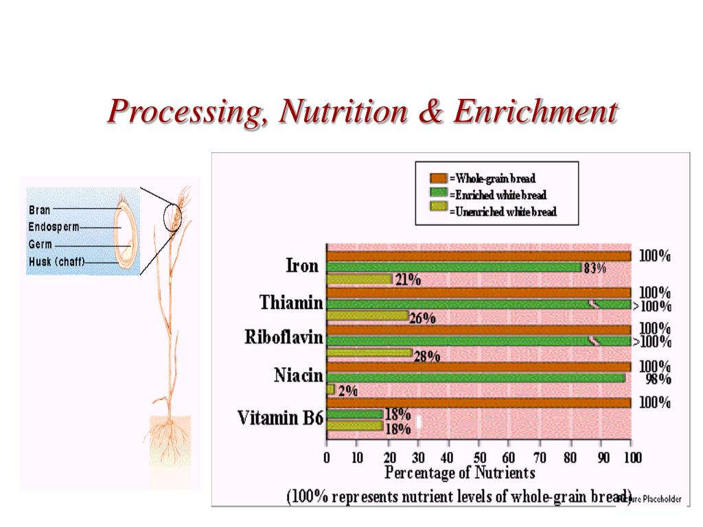 Processing, Nutrition & Enrichment
