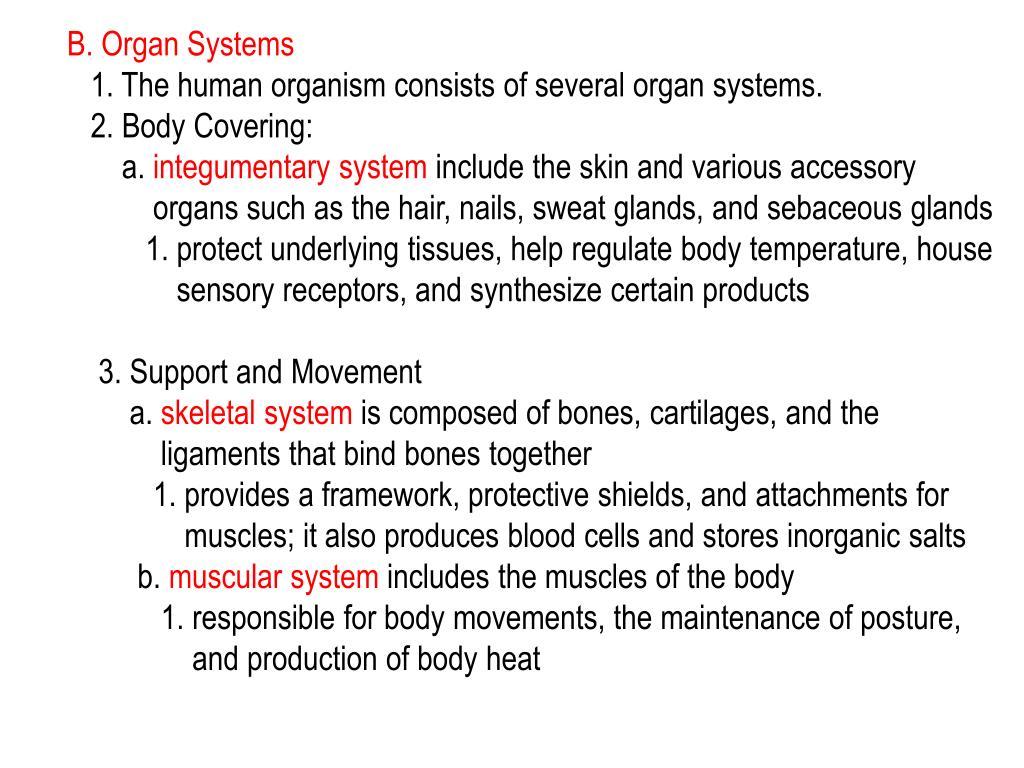 B. Organ Systems