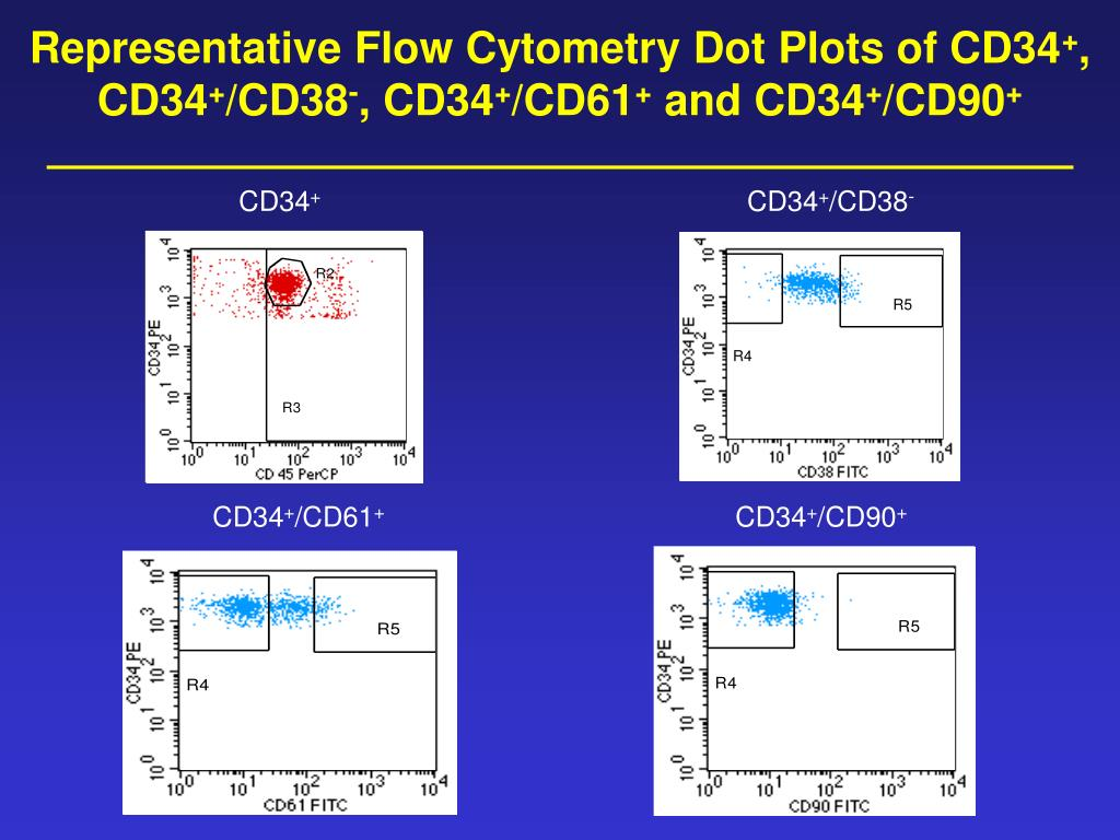 Representative Flow Cytometry Dot Plots of CD34