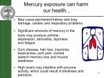 mercury exposure can harm our health
