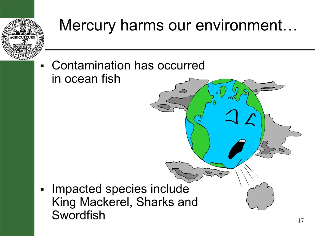 Mercury harms our environment…