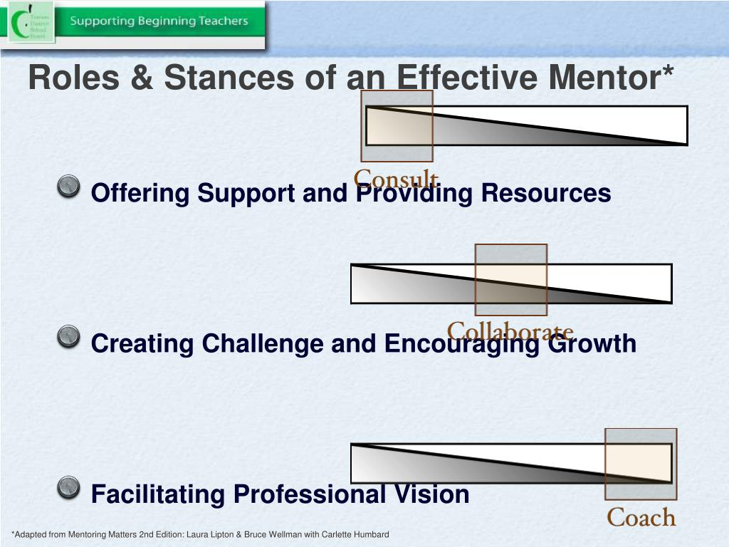Roles & Stances of an Effective Mentor*