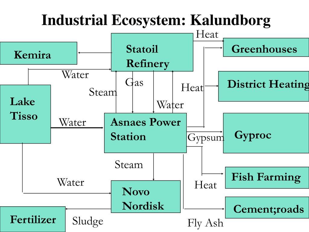 Industrial Ecosystem: Kalundborg