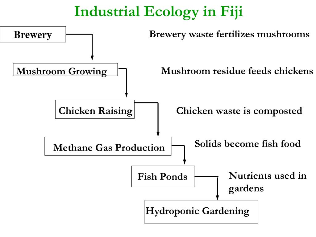 Industrial Ecology in Fiji