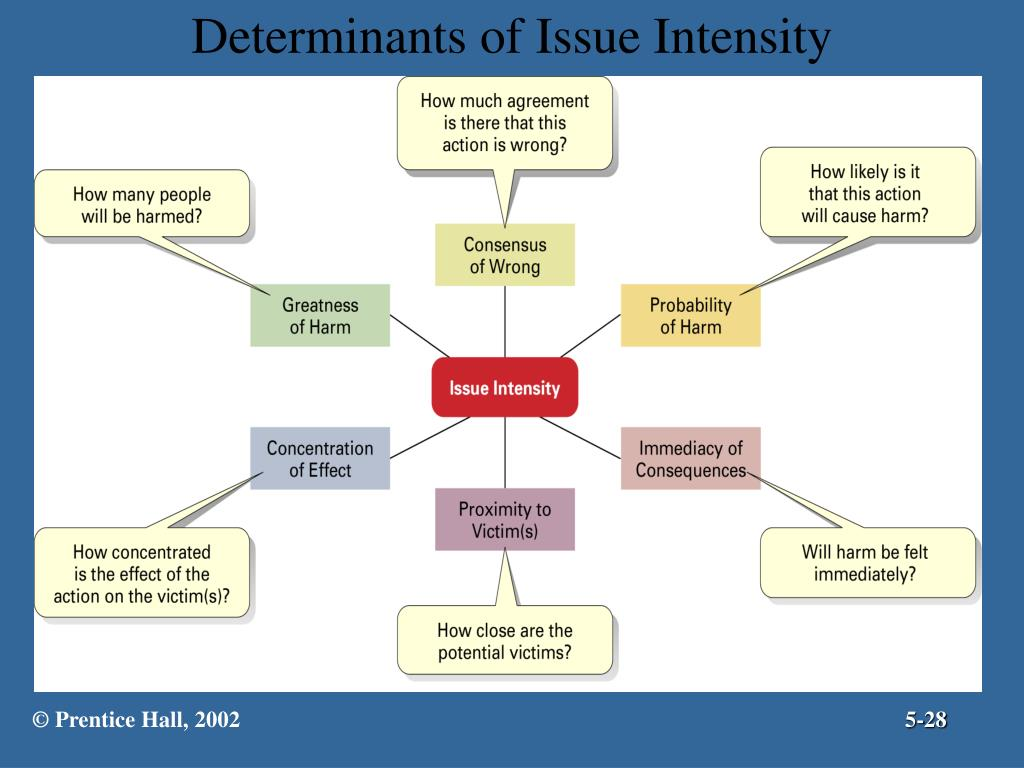 Determinants of Issue Intensity