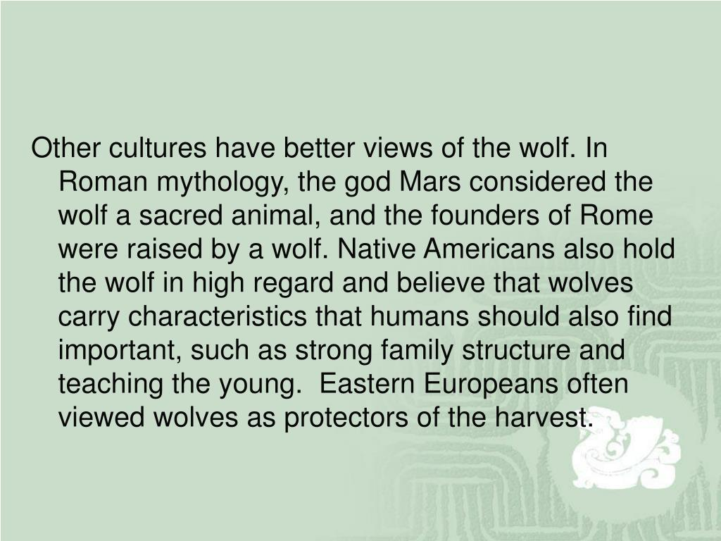Other cultures have better views of the wolf. In Roman mythology, the god Mars considered the wolf a sacred animal, and the founders of Rome were raised by a wolf. Native Americans also hold the wolf in high regard and believe that wolves carry characteristics that humans should also find important, such as strong family structure and teaching the young.  Eastern Europeans often viewed wolves as protectors of the harvest.