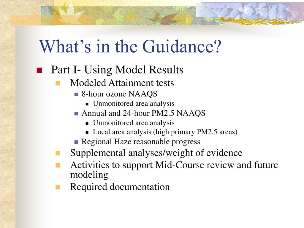 What's in the Guidance?