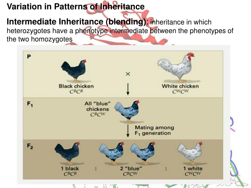 Variation in Patterns of Inheritance