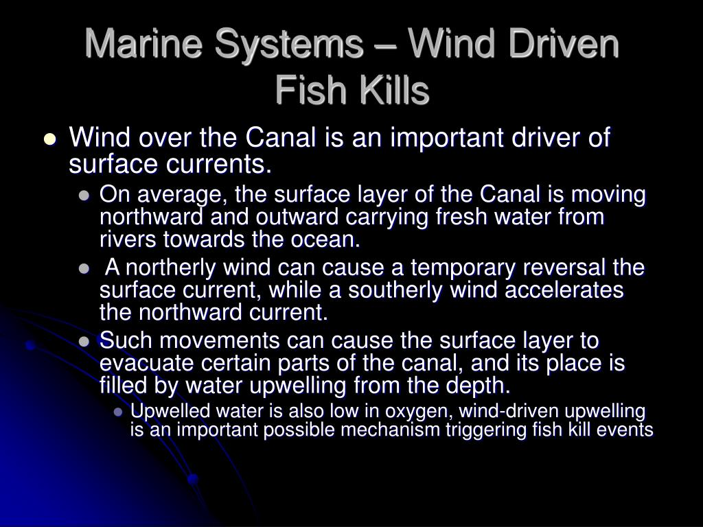Marine Systems – Wind Driven Fish Kills