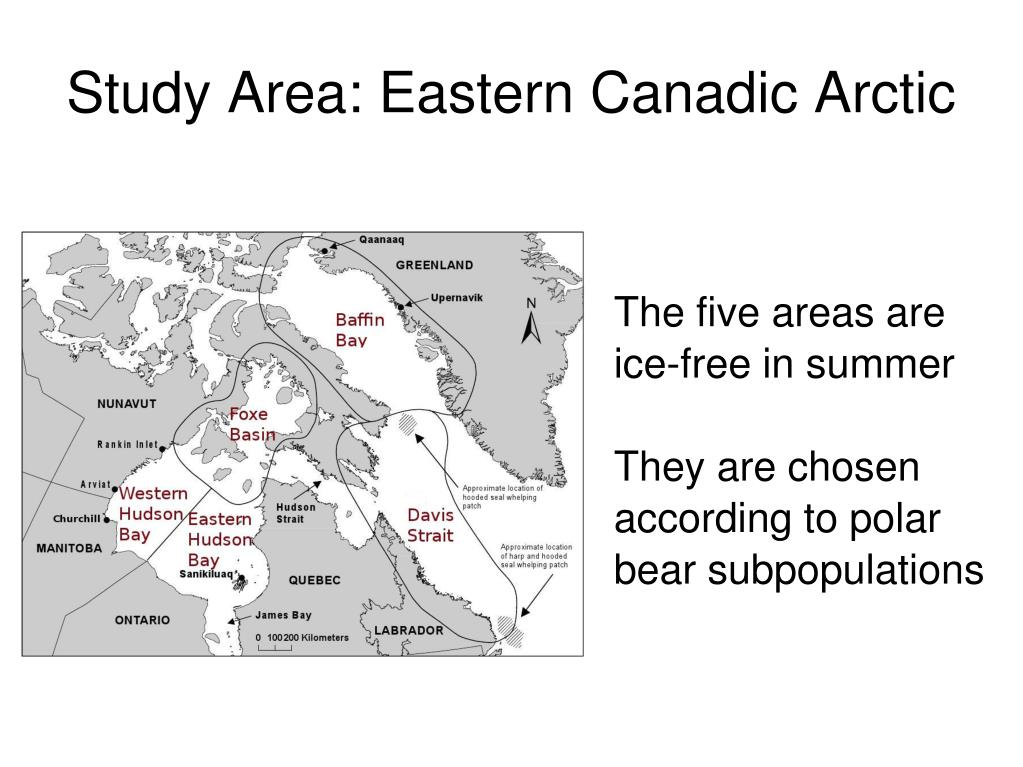 The five areas are ice-free in summer
