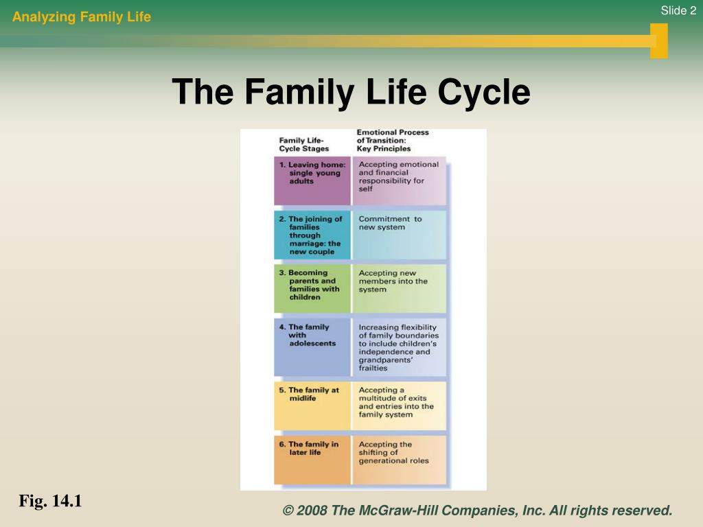 Analyzing Family Life