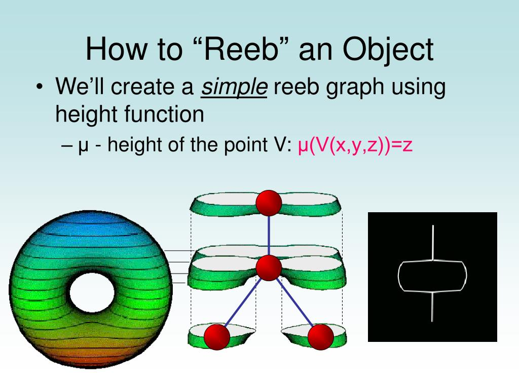 """How to """"Reeb"""" an Object"""
