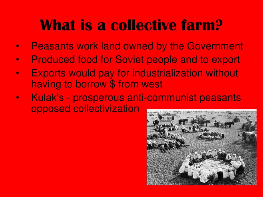 What is a collective farm?