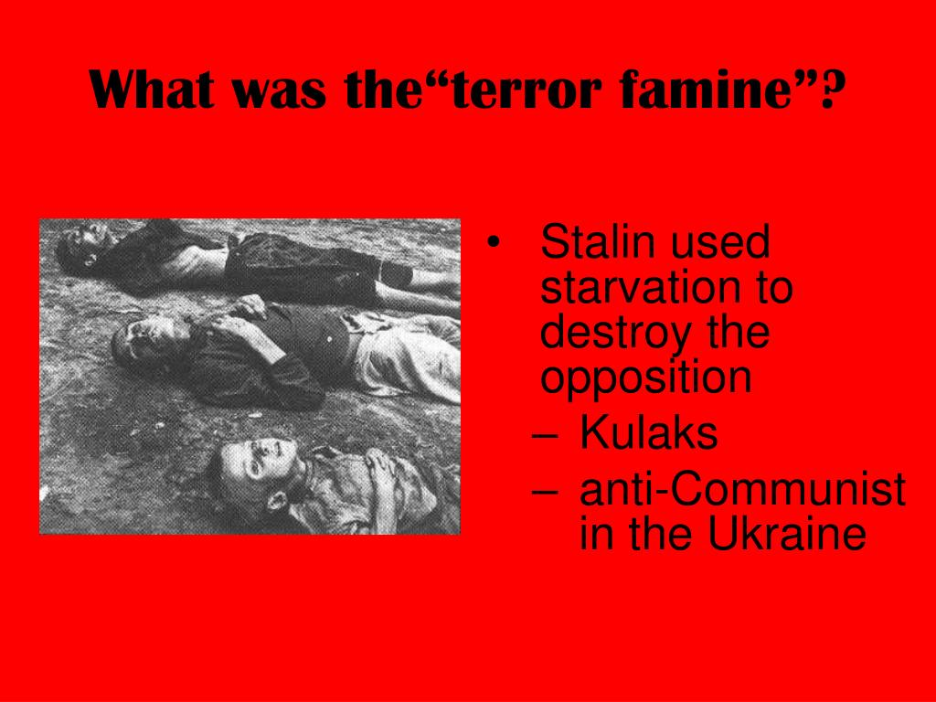 "What was the""terror famine""?"