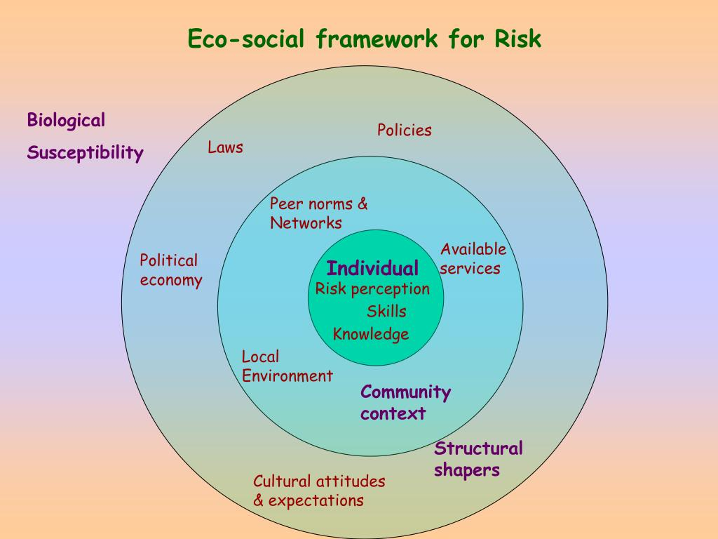 Eco-social framework for Risk