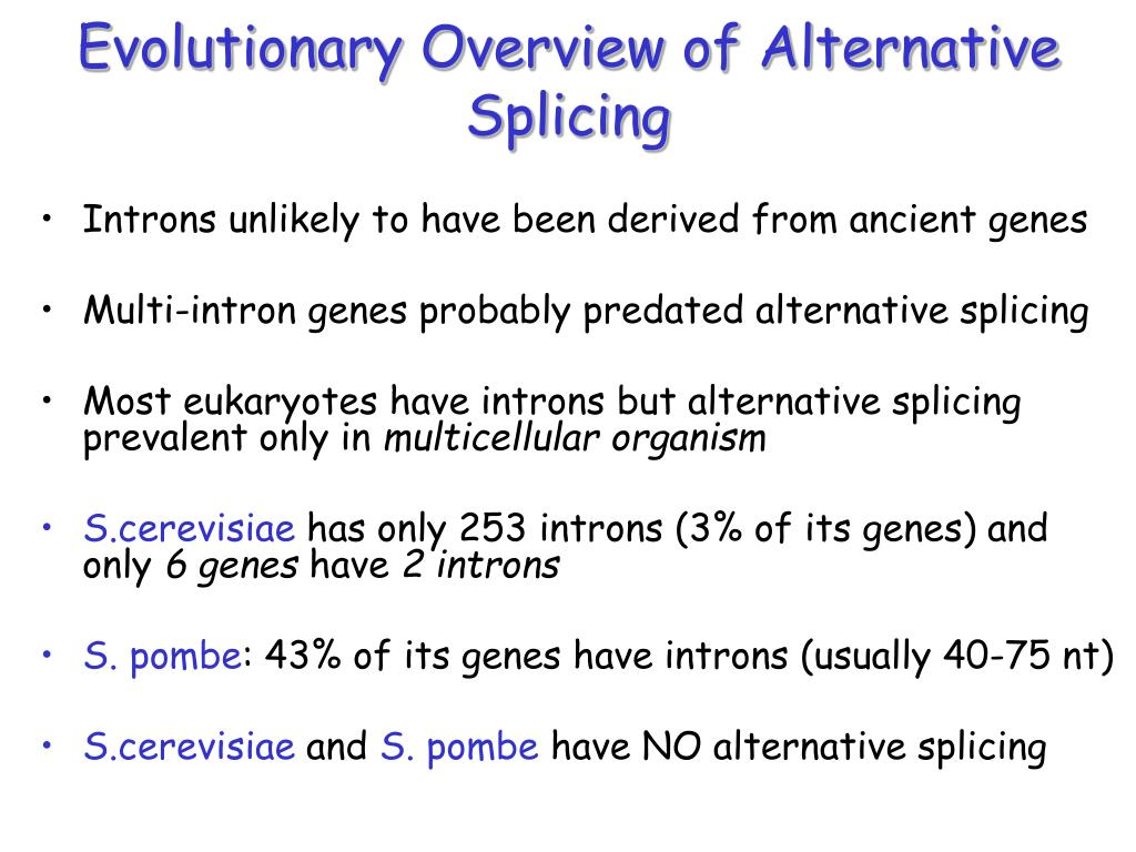 Evolutionary Overview of Alternative Splicing