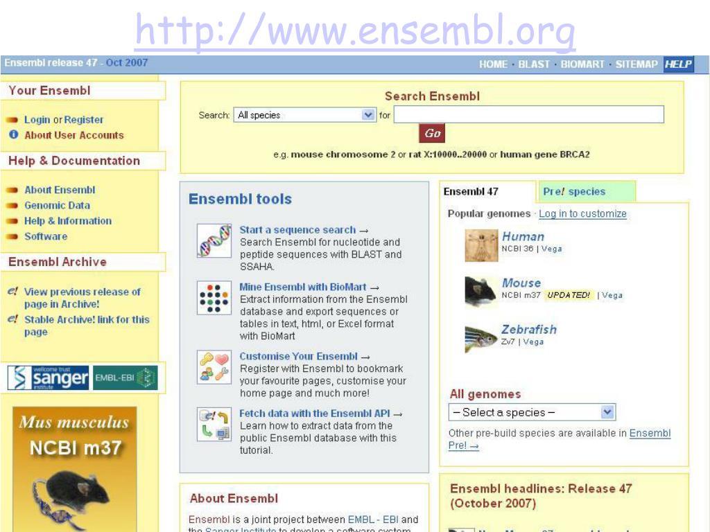 http://www.ensembl.org