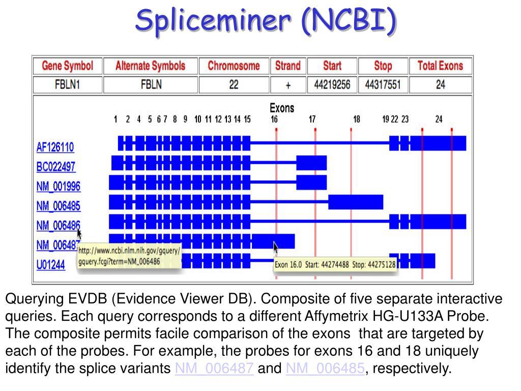 Spliceminer (NCBI)