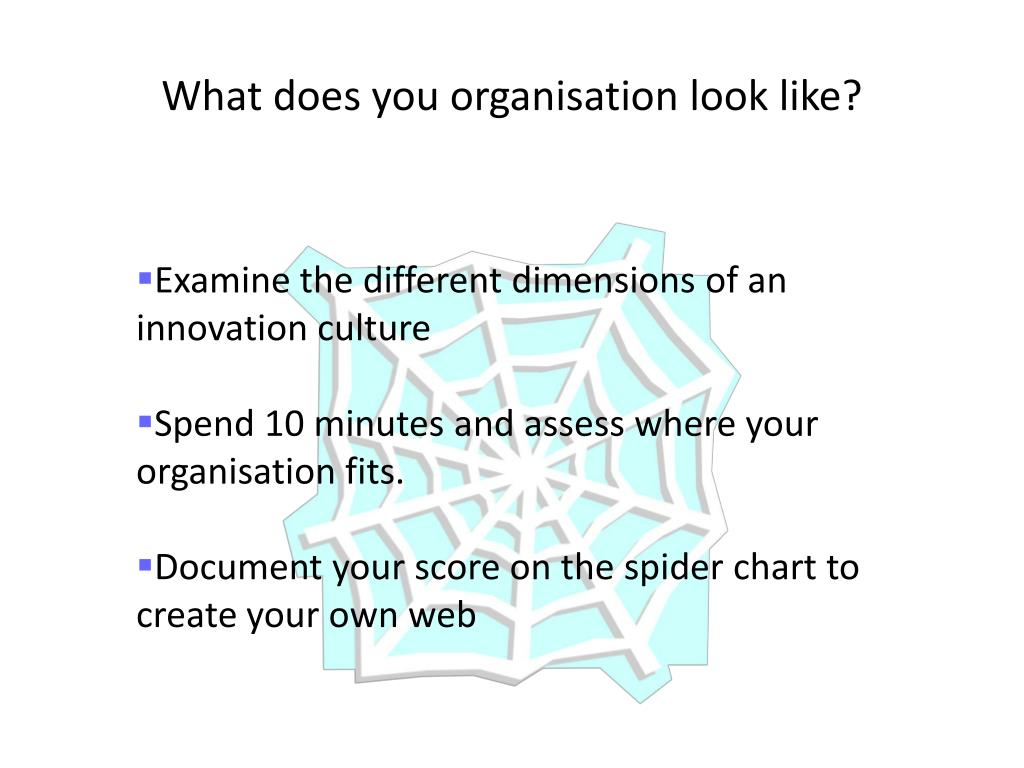 What does you organisation look like?